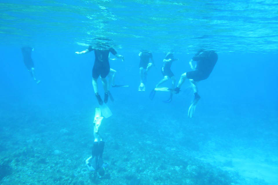 A photo by Ben Greenstein of students doing research in the Bahamas.