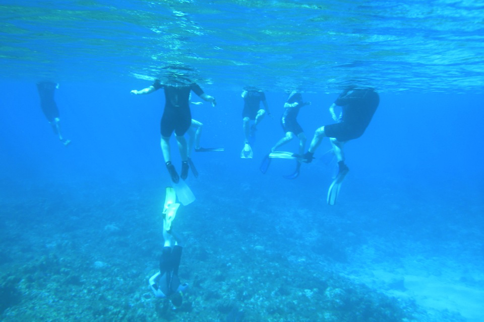 Students explore underwater geology in this photo by Professor Ben Greenstein.