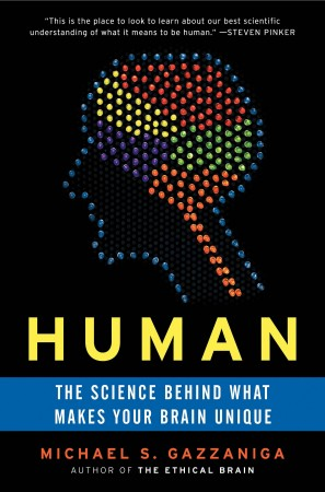 Human pb c