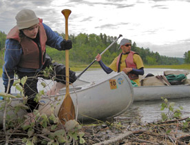 Students Mackenzie Chase and Chris Marzen negotiate a beaver dam in the Boundary Waters Canoe Area Wilderness as part of a 2008 Wilderness Politics course. (Photo by Craig Allin)
