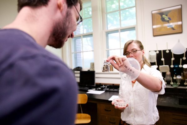 Professor Kelsey Feser and John Lewis '17 are working with samples of shells to discover more about once-living marine populations for their Cornell Summer Research Institute project.