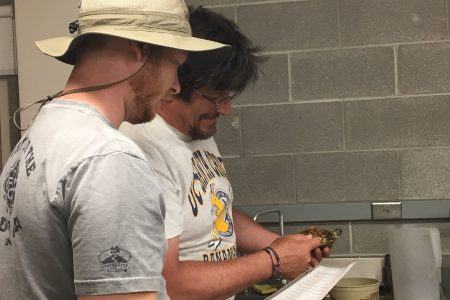 Professor Andy McCollum works with Gabe Bizovi '19 2