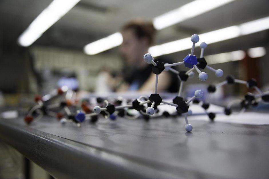 Students research in Professor Jai Shanata's lab 6