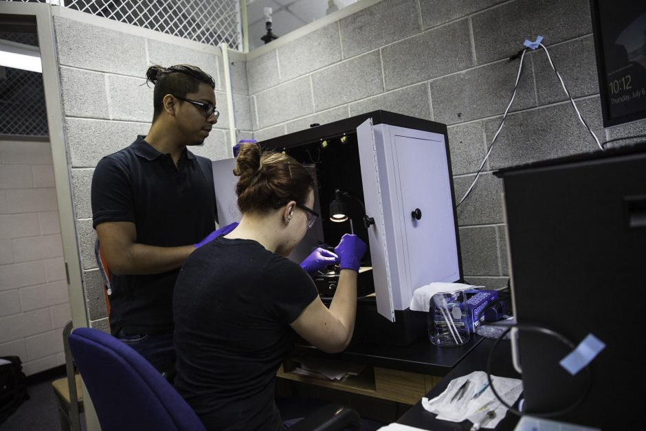 Students research in Professor Jai Shanata's lab 13