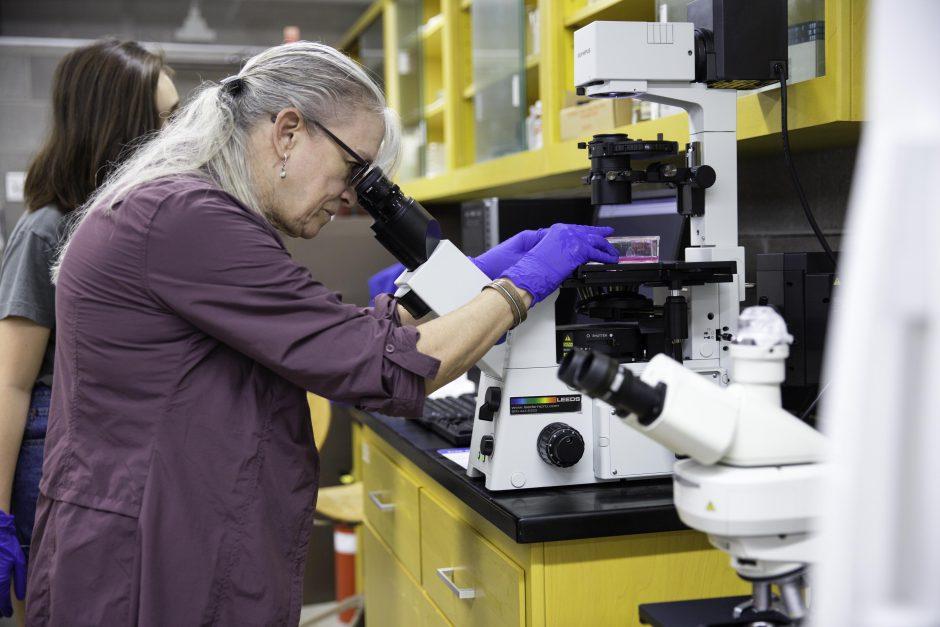 Nina Kahn '18 and Professor Barbara Christie-Pope conduct research