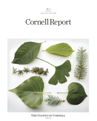 Fall 2019 Cornell Report cover