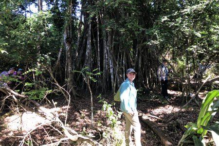 Erin Hosto in rainforest