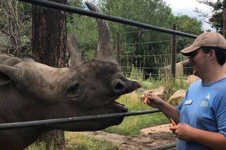 Nate feeling a rhino.