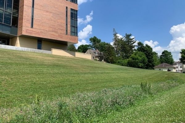 In just one block Cornell College Environmental Biology students have created a plan to reduce the campus's impact on the environment.