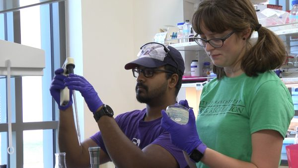 Annika Sutter and Alexander Bajoon work in the lab during CSRI.